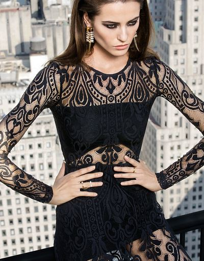 Alexis Sheer Lace Dress